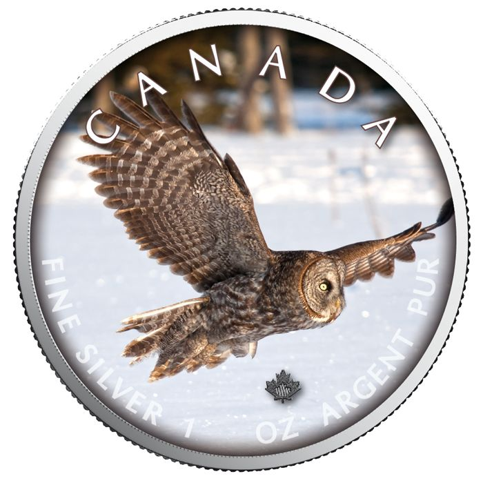 Canada - 5 Dollars 2019 - Maple Leaf Wildlife - Owl - 1 oz - Silver