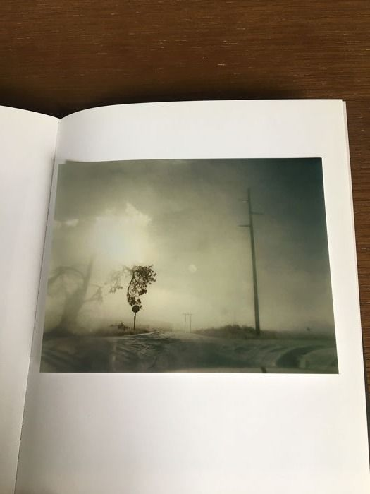 Todd Hido - Croocked Craked Tree in Fog with signed print  - 2009