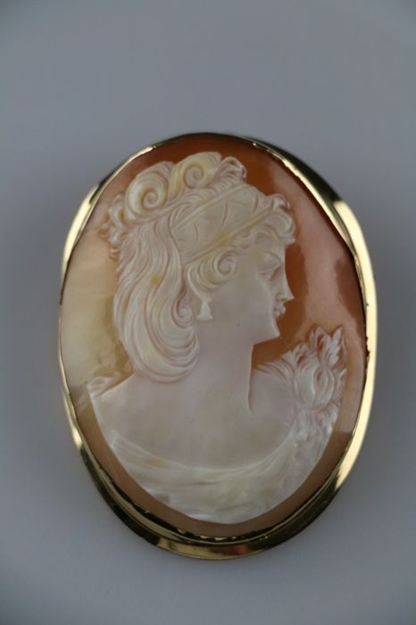 14 kt. Yellow gold - Brooch with large cameo