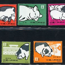 china 1960 - Swine - Michel NN. 546/50