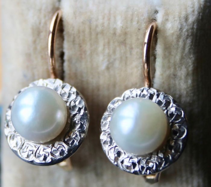 14 kt. Pink gold - Earrings sea/salty Japanese Akoya Pearls - Wonderful state