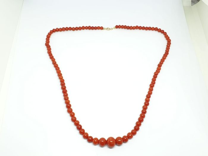 18 kt. Yellow gold, Coral - Necklace Coral