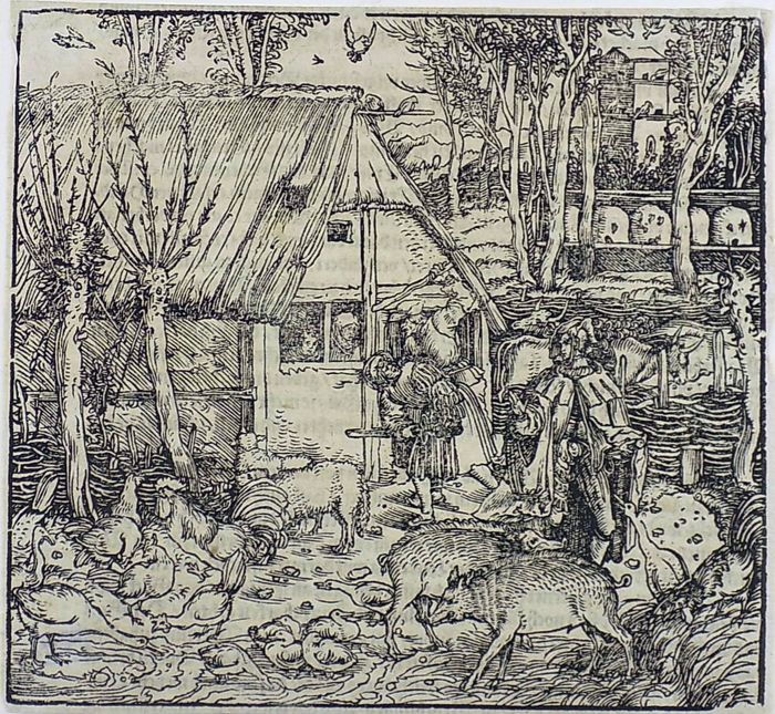 Hans Weiditz (1500-1536) - Master Woodcut - Murder on Farm (!) Beehive Poultry - 1532