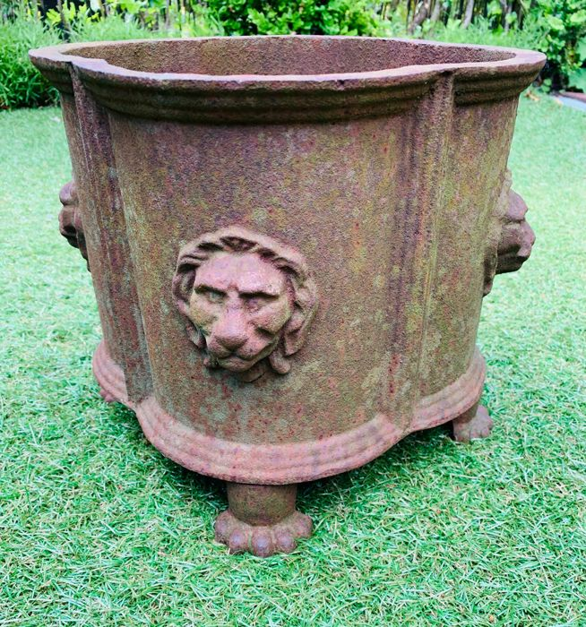 Jardinière with four lion heads - Neoclassical Style - Iron (cast) - 20th century
