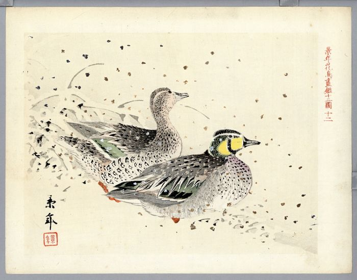 "Origineel houtblok print - With signature and seal 'Keinen' - Kanmuri-umisuzume bird - ""Keinen kacho ga kagami juni zu"" 景年花鳥画鑑十二図 - ca. 1920"