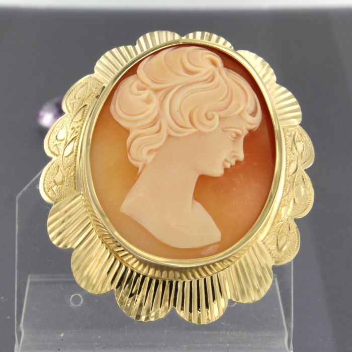 14 kt. Yellow gold - Brooch cameo
