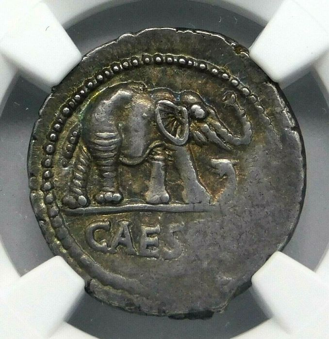 Used, Roman Republic - AR Denarius, Julius Caesar as Dictator (49-44 BC) April-August 49 BC. for sale