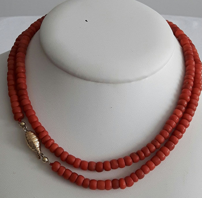 14 kt. Yellow gold - Necklace Blood coral