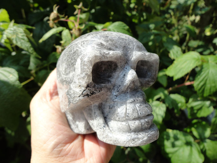 Rock crystal (quartz) skull - 74×65×84 mm - 623 g Minerals & Meteorites Decorative Minerals for sale