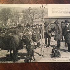 France - Profession, Fairs and Markets - Postcards (Set of 32) - 1900-1920