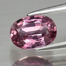 1 pcs Rosa Safir - 1.01 ct