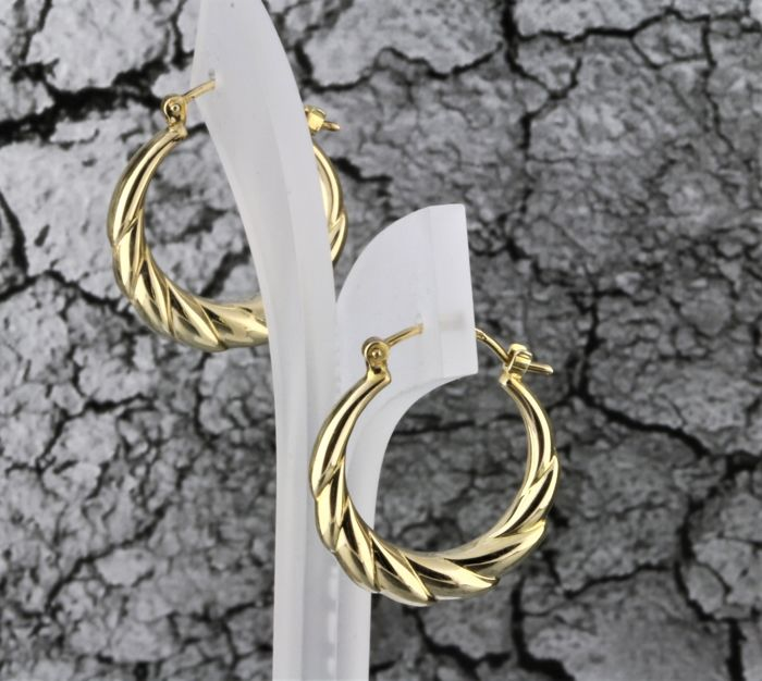 8 kt. Gold, Yellow gold - Earrings