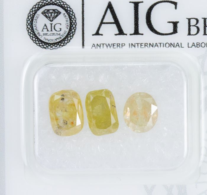 3 pcs Diamanten - 2.84 ct - Natural Fancy INTENSE Gelb - I3  *NO RESERVE*