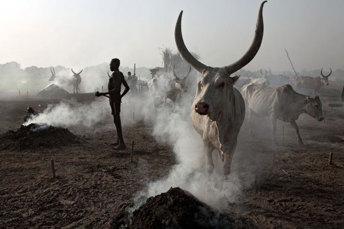 Bruno Zanzottera - South Sudan | My life in a cattle camp | 2011 | vol I (3xPhotos)