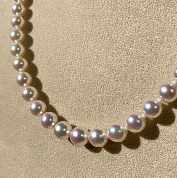 18 kt. Akoya pearls, Gold, Saltwater pearls, Top quality pearls certified  - Necklace