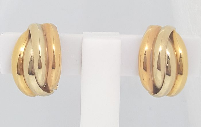 18 kt. Pink gold, White gold, Yellow gold - Earrings