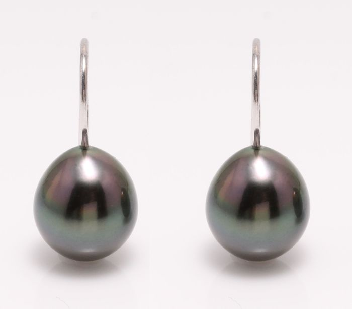 NO RESERVE PRICE - 18 kt. White Gold - 10x11mm Peacock Tahitian Pearl Drops - Earrings