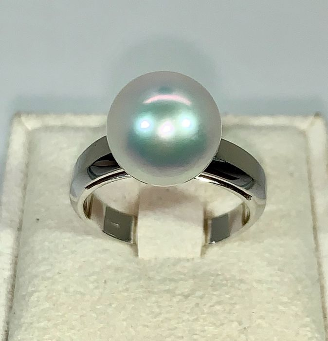 18 kt. Saltwater pearls, South sea pearl, White gold, Ø 10,9 MM - 18K WG - Ring