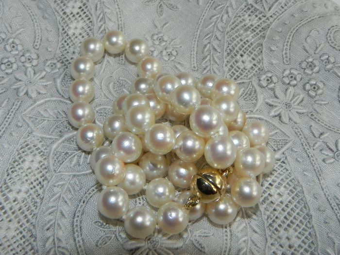Langer Austria - 14 kt. Akoya pearl, 7 mm - Pearl necklace made of Japanese Akoya saltwater pearls Ø 7 mm with 585 / 14K G
