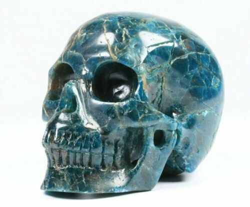 Crystal Skull Carved and Polished in Kyanite - 89×68×55 mm - 495 g