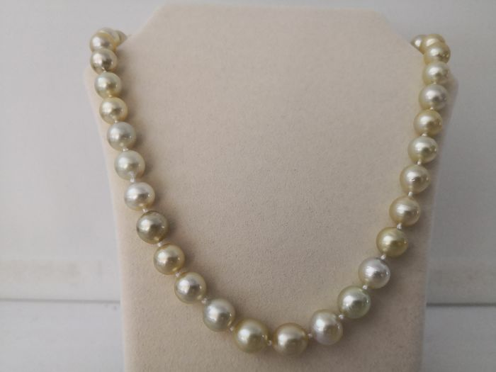 South sea pearls, Natural Colors and luster  9-11 mm  - Necklace