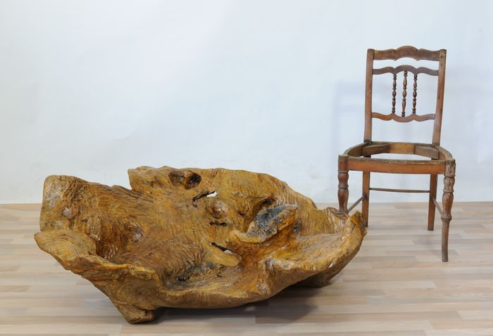 Sculpture made from a large exotic plant root, gouged by hand