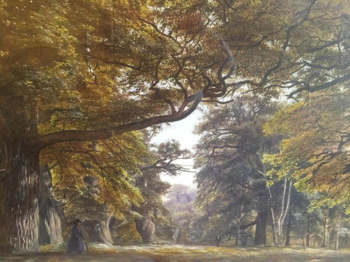 Edmund George Warren (1834-1909) - Forest