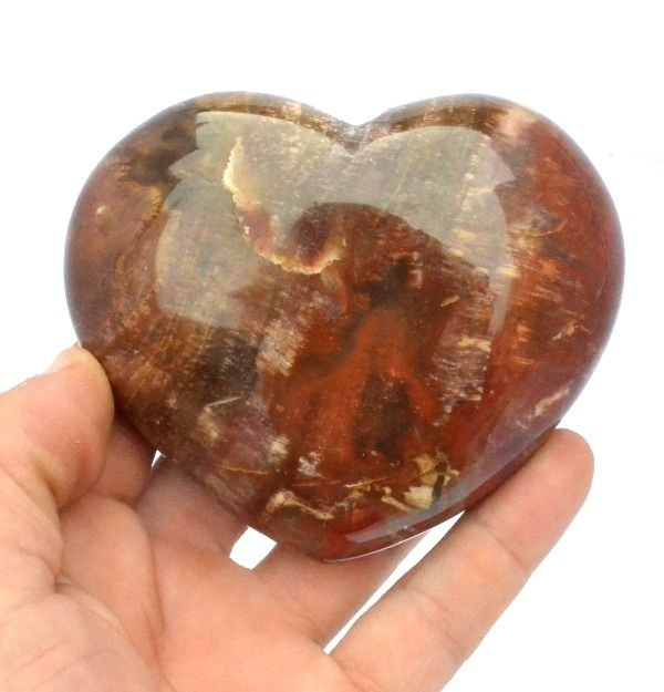 silicified fossil wood Heart - 10.5×9.5×5 cm - 514 g