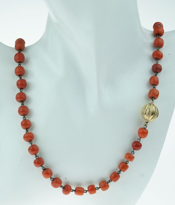 Antiek - 14 kt. Yellow gold - Necklace Blood coral