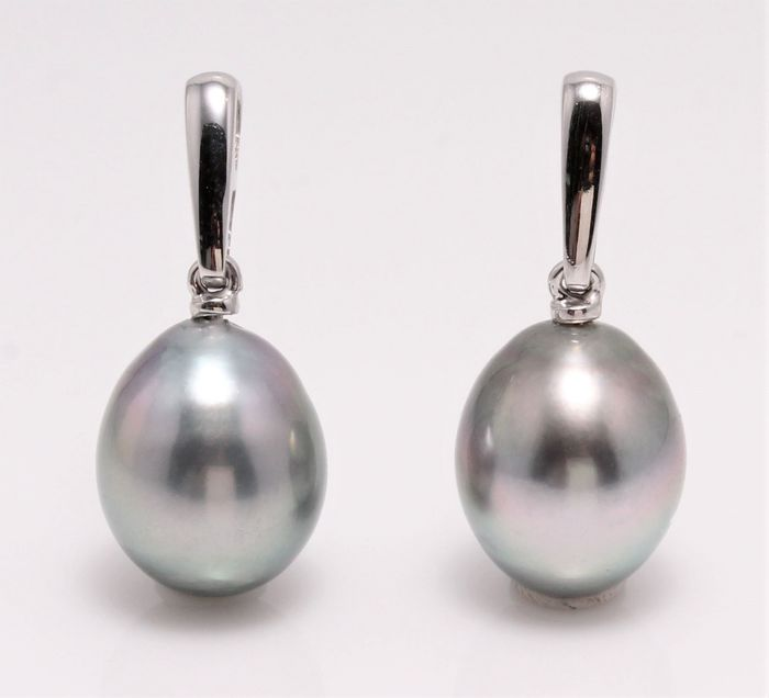 NO RESERVE PRICE - 14 kt. White Gold - 10x11mm Tahitian Pearl Drops - Earrings