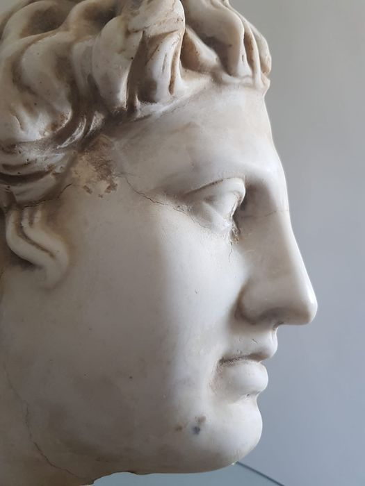 Head of Minerva - Marble