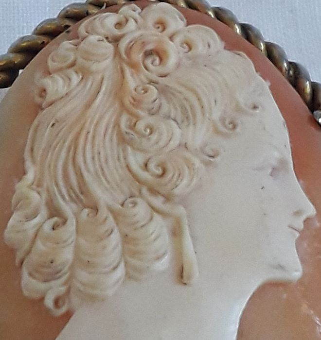 French Genuine Cameo Brooch - Shell, Goldplate