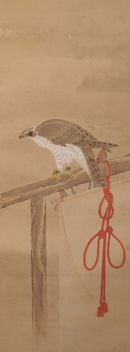 Hanging scroll - Paper, Silk - Falcon - With seal - Japan - Mid to late 19th century (Edo/Meiji)
