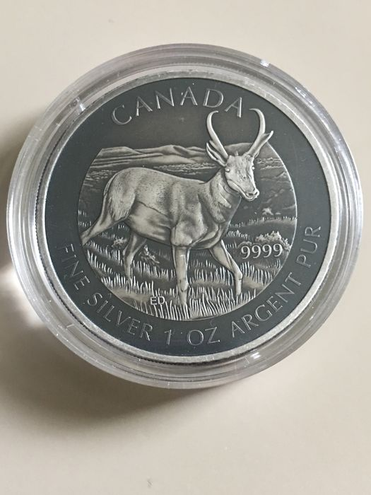 "Canada - 5 Dollar 2013 - ""Antelope"" - Antique Finish - 1 oz - silver"
