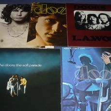 Doors - 5LP  Albums in  incl. Live on White/Grey Elektra labels  - Multiple titles - 2xLP Album (double album), LP's - 1973/1985