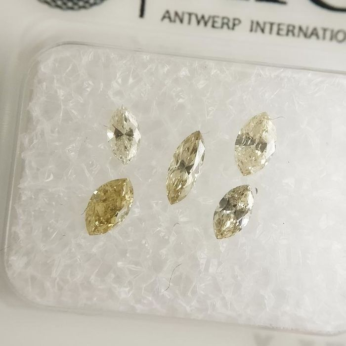 5 pcs Diamants - 0.50 ct - Marquise - fancy light yellow to fancy intense yellow - SI1-SI2