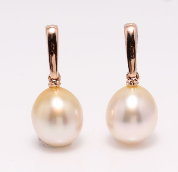 NO RESERVE PRICE - 14 carati Rose Gold - 10x11mm Golden Golden Sea Pearl Drops - Orecchini