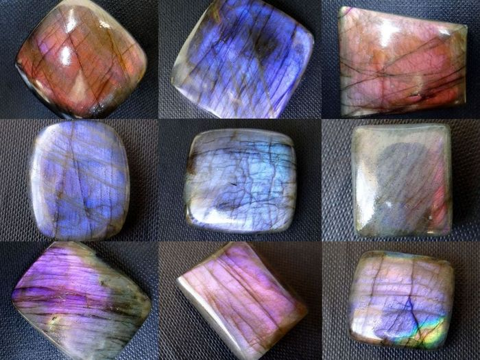 9 pcs  Purple Flash Labradorite - 520.00 ct