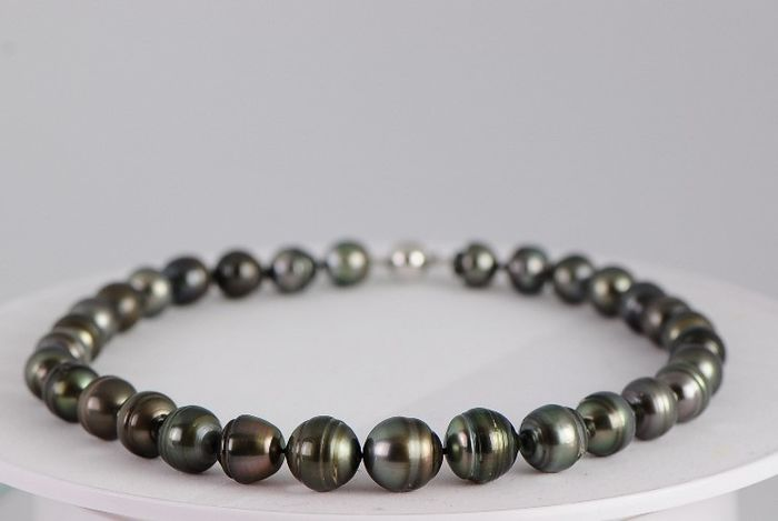- Multicoloured Tahitian pearl necklace, 11-16 mm in diameter - 925 silver clasp