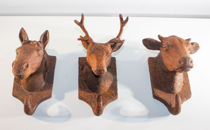 Coat rack of deer, horses and cows head - Metal