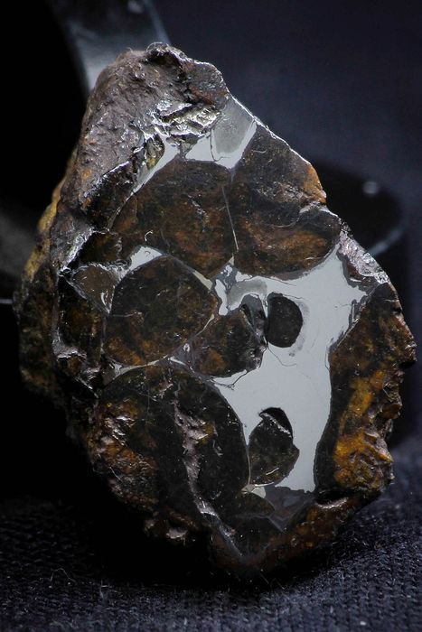 Sericho Pallasite Meteorite Polished Section Fell in Kenya Pallasite - 10.5 g