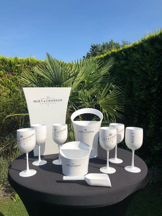 Moët et Chandon Ice set of 6 glasses, cooler, ice-bucket & ice-scoop and planter - Champagne - 10 items in total