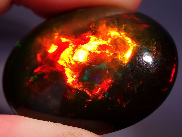 Museu Piece Black Opal Cabochon Freeform 64.175ct - 34.38×27.89×13.91 mm - 12.835 g