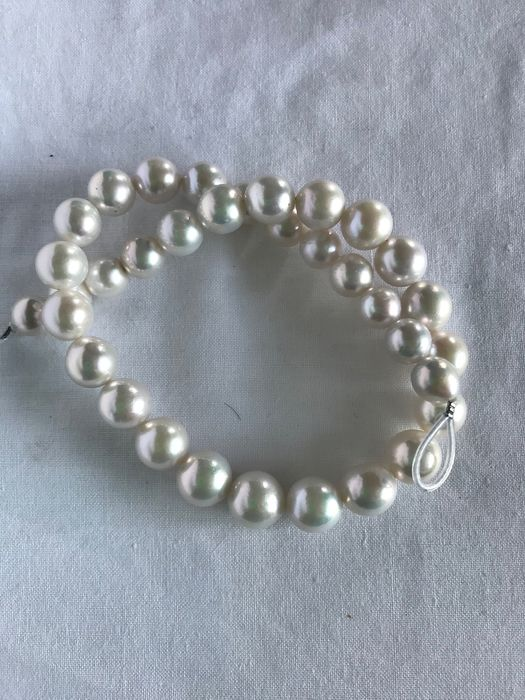 Wit Zoetwaterparels Strand - 414.00 ct