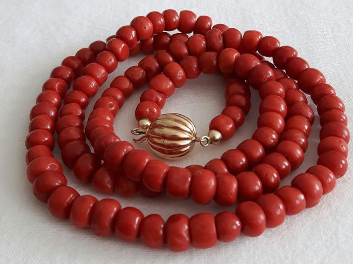 14 kt. Gold - Necklace Thick natural blood coral
