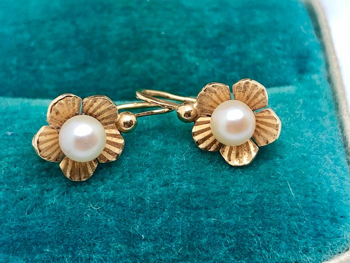 18 kt. Yellow gold - Earrings, Earrings Pearl