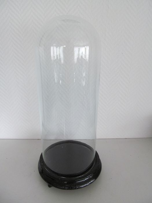 Old glass bell jar on wooden base - Glass and wood