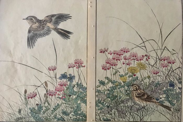 "Origineel houtblok print - Imao Keinen (1845-1924) - N° 10 of the series ""Keinen kachō gafu"" ""景年花鳥画譜"" (Keinen's Birds & Flowers Album) - 1891"