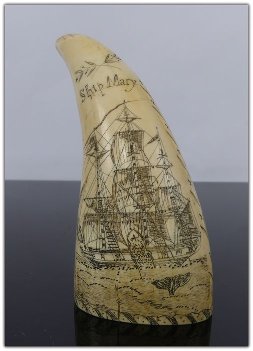 """Scrimshawed whale's tooth, """"Ship Mary V.S.N"""" - Whale Ivory - mid 19th century"""