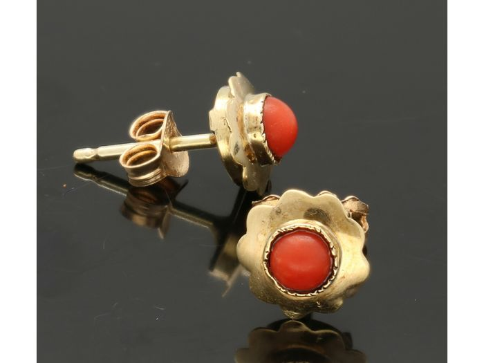 14 kt. Yellow gold - Earrings blood coral